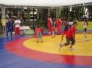 Día del Deporte 2008