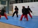 2009 Exhibición KEMBUDO