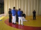 2014 Congreso Kyusho Jitsu