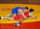 2010 Cpto. de Madrid de Luchas Olímpicas SENIOR-JUNIOR-CADETE