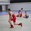 Lucha Grecorromana y Libre Olimpica_8