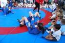 2015 Semana del Deporte Villaverde